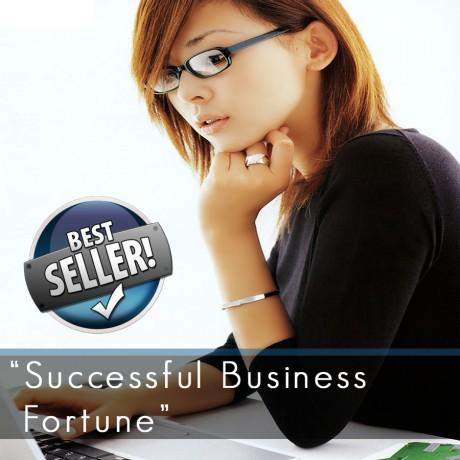 Successful Business Fortune